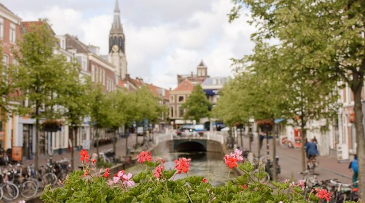 Rotterdam wellness guide