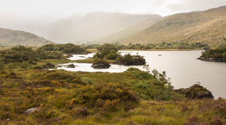 Killarney National Park Walks: 6 Scenic Trails