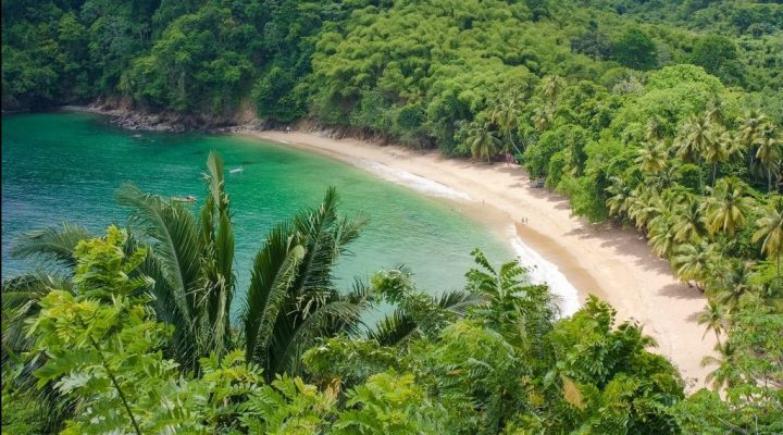 8 Beaches in Tobago for Swimming and Chilling