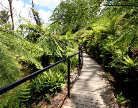 Where to Find Serenity in Australia