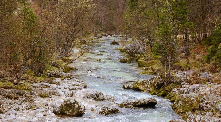 Mostnica stream in Voje Valley, Slovenia
