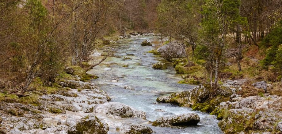 Mostnica stream in Voje Valley, Slovenia